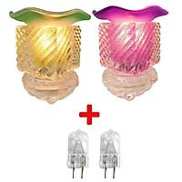Combo 2 Đèn xông tinh dầu thủy tinh vuông và 2 bóng đèn (Giao mầu ngẫu nhiên)