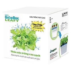 Combo 10 Thùng Trồng Thủy Canh Rau Ăn Lá Growbox Leafy Hfarm-001