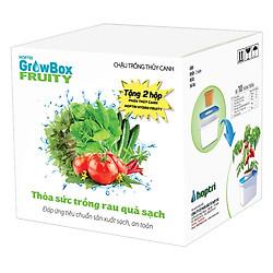 Combo 10 Thùng Trồng Thủy Canh Rau Ăn Trái Growbox Leafy Hfarm-002