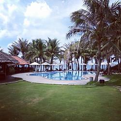 TTC Resort Premium Kê Gà 4* - Ăn 3 Bữa, Hồ Bơi, Nhiều Ưu Đãi Hấp Dẫn