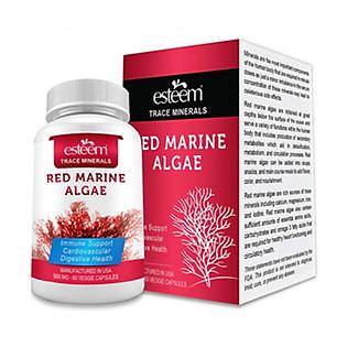 Thực Phẩm Chức Năng Tăng Sức Khỏe Sinh Lý Cho Nam Esteem Red Marine Algae (Hộp 60 Viên )