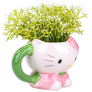 Chậu Hoa Kitty 227 - Hồng