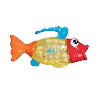 Cá Làm Mưa Munchkin - 18002