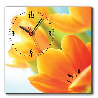 Tranh Đồng Hồ Dyvina 1T3030-1 - Hoa Tulip Vàng