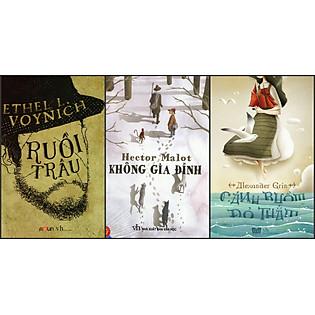 Combo Ruồi Trâu - Không Gia Đình - Cánh Buồm Đỏ Thắm (Đinh Tị Books)