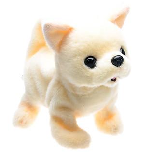 Chó Bông Baby Chihuahua Iwaya