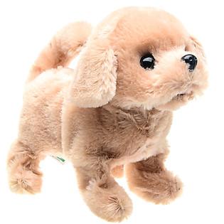 Chó Bông Baby Retriever Iwaya