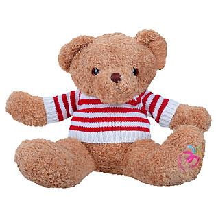 Gấu Bông Teddy Áo Len 0215