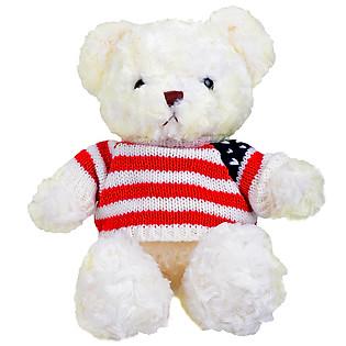 Gấu Bông Áo Len Nhỏ 1502-0120 (25-75Cm)
