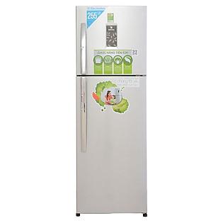 Tủ Lạnh Electrolux ETB2600PE-RVN (260L)
