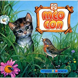 Theo Dấu Chân - Mèo Con