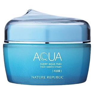 Kem Dưỡng Cho Da Dầu Nature Republic Super Aqua Max Fresh Watery Cream (80Ml)