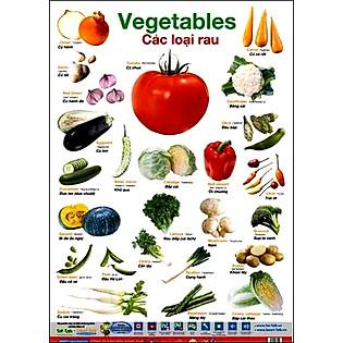 Poster 2 Mặt - Thức Ăn Và Các Loại Rau