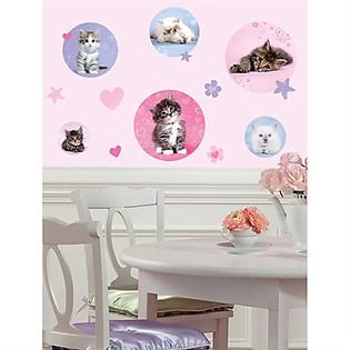 Giấy Dán Tường Roommates Mèo Con Đáng Yêu RMK1614SCS
