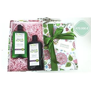 Bộ Quà Tặng Dầu Gội & Dầu Xả Làm Phồng Tóc Andalou Naturals Lavender & Biotin Full Volume