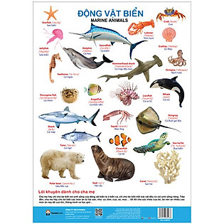 Poster - Động Vật Biển