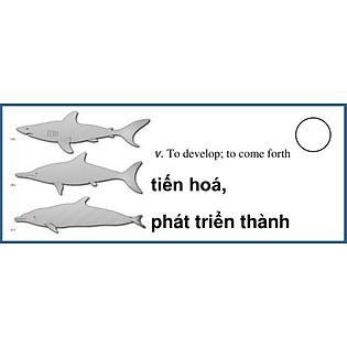 Flashcard 400 Từ Vựng Quan Trọng Luyện Thi TOEFL (F04)