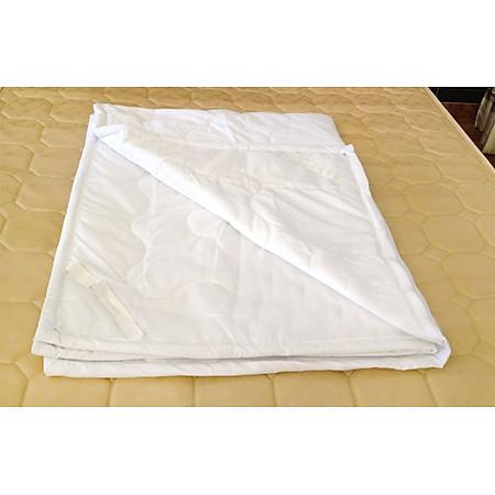 Tấm Bọc Bảo Vệ Nệm 100% Cotton Drap 24-1m8
