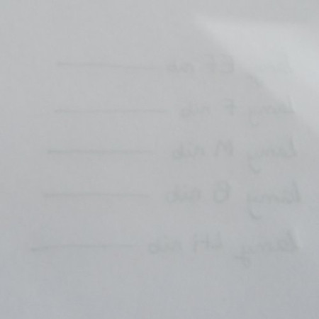 Bút Mực Cao Cấp LAMY safari white Mod. 19