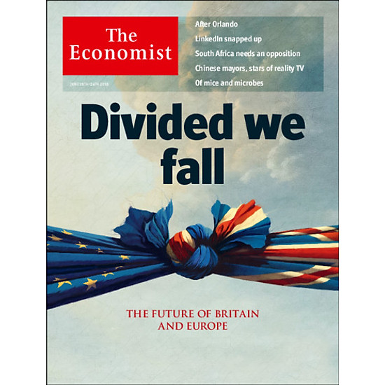 [Download sách] The Economist: Divided We Fall - 25