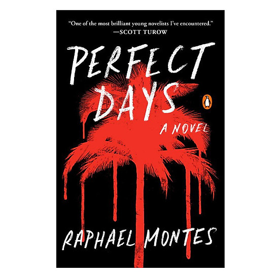 [Download Sách] Perfect Days (A Novel)