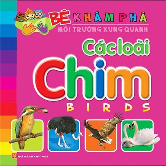 Bé Khám Phá Môi Trường Xung Quanh – Các Loài Chim