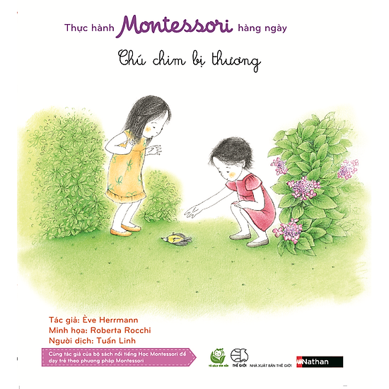 Thực Hành Montessori Hàng Ngày – Chú Chim Bị Thương