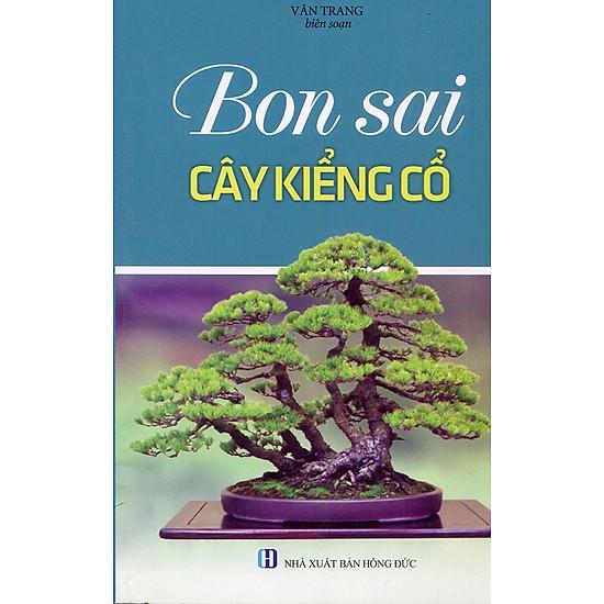 Bonsai Cây Kiểng Cổ