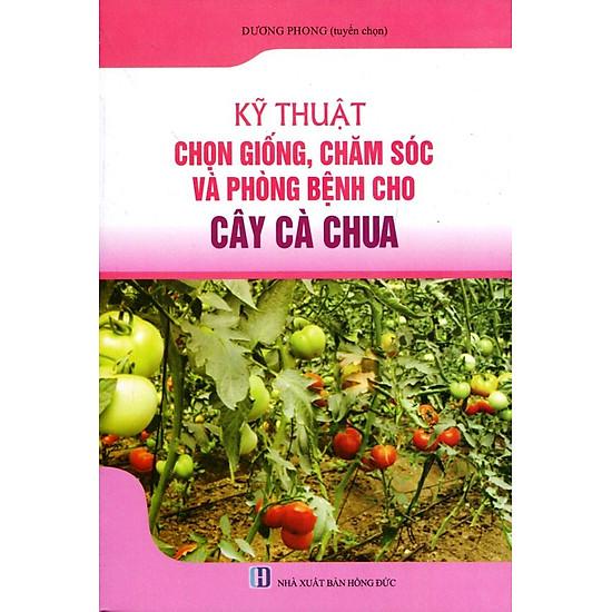 [Download Sách] Kỹ Thuật Trồng, Chăm Sóc Và Trừ Bệnh Cho Cây Cà Chua
