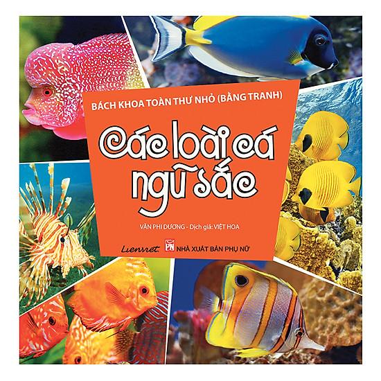 Bách Khoa Toàn Thư Nhỏ (Bằng Tranh) - Các Loài Cá Ngũ Sắc