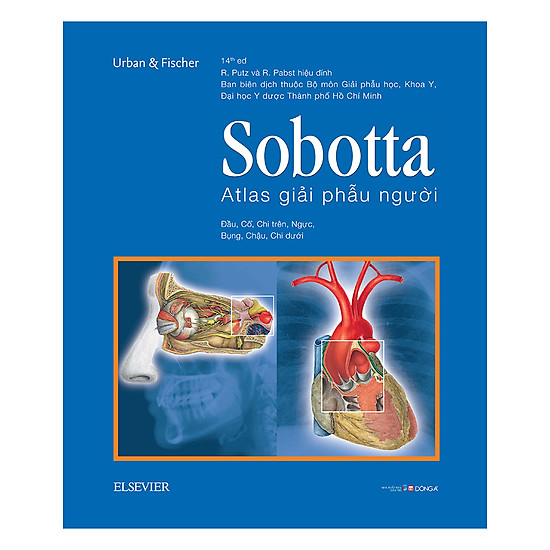 [Download Sách] Sobotta Atlas Giải Phẫu Người