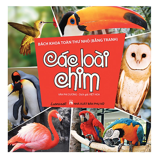 Bách Khoa Toàn Thư Nhỏ (Bằng Tranh) - Các Loài Chim