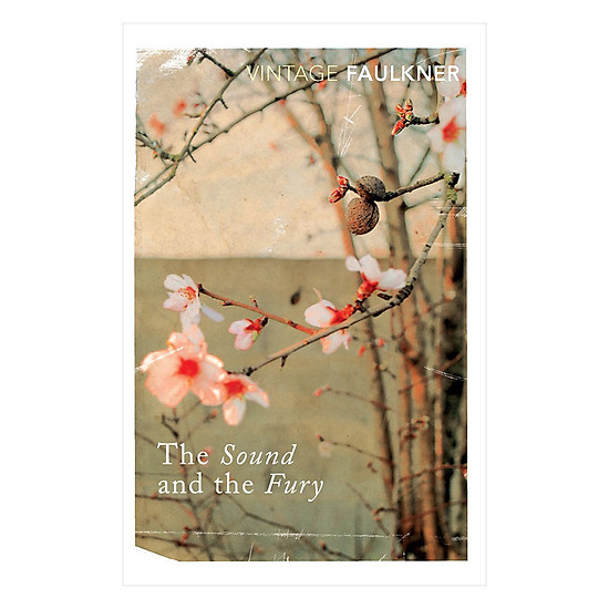 [Download sách] The Sound And The Fury