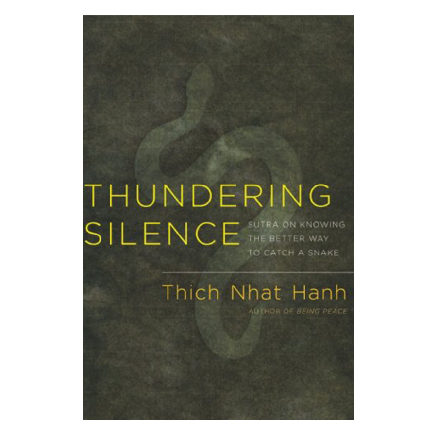 Bìa sách Thundering Silence: Sutra On Knowing The Better Way To Catch A Snake