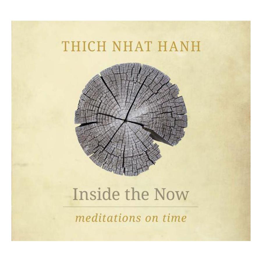 Bìa sách Inside The Now: Meditations On Time