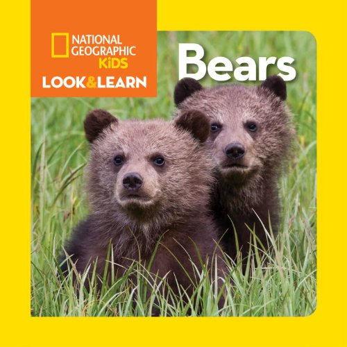 Bìa sách National Geographic Little Kids Look  And Learn: Bears