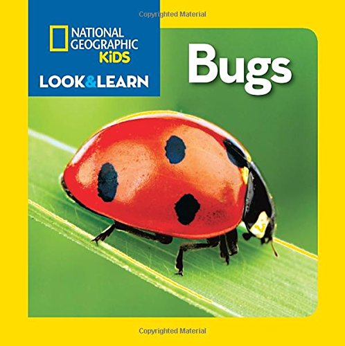 Bìa sách National Geographic Little Kids Look  And Learn: Bugs