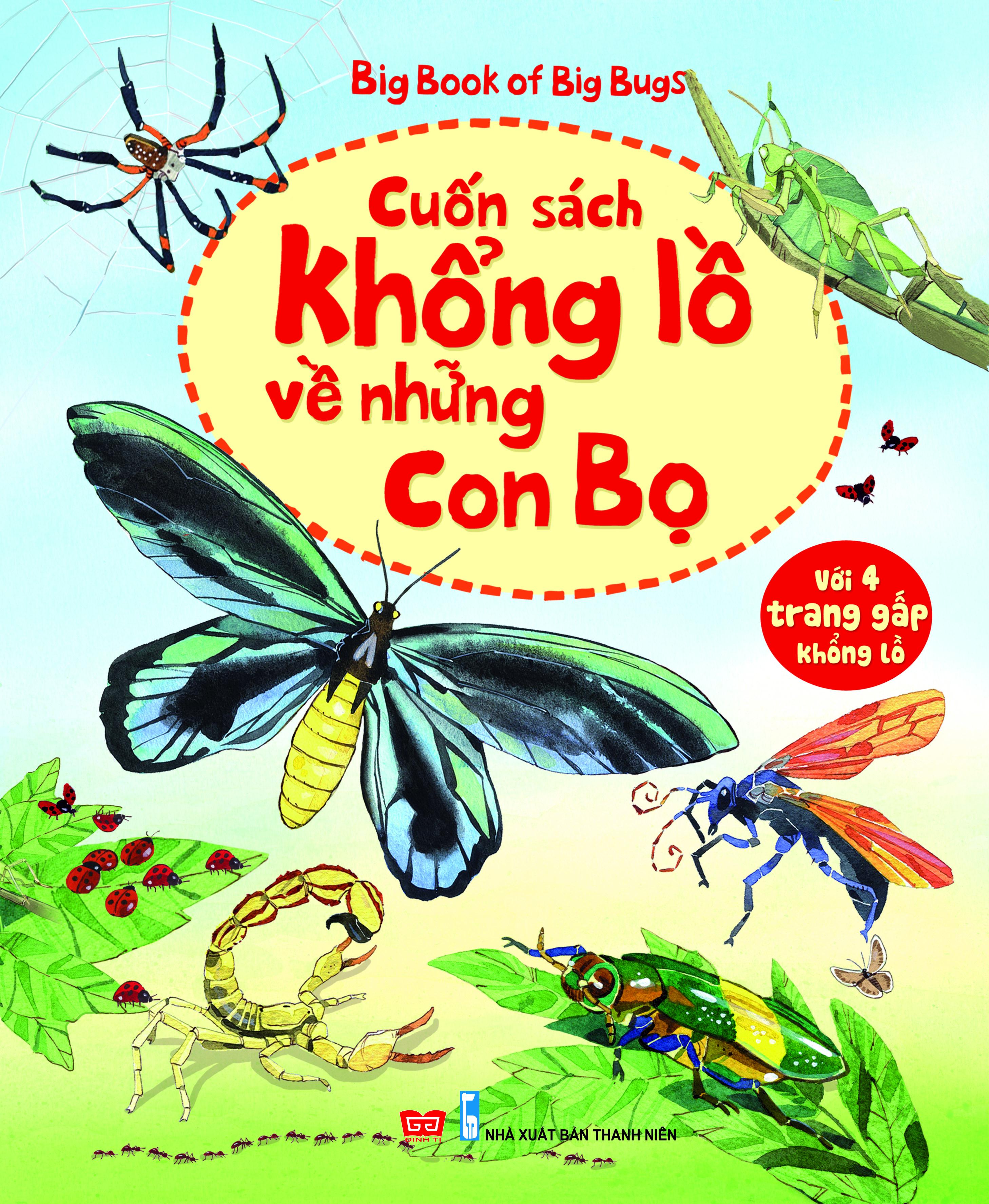 Bìa sách Big Book Of Big Bugs – Cuốn Sách Khổng Lồ Về Những Con Bọ