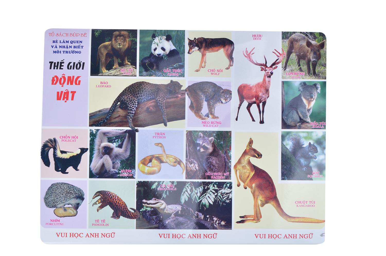 Bìa sách Tranh Thế Giới Động Vật (Song Ngữ Anh - Việt)