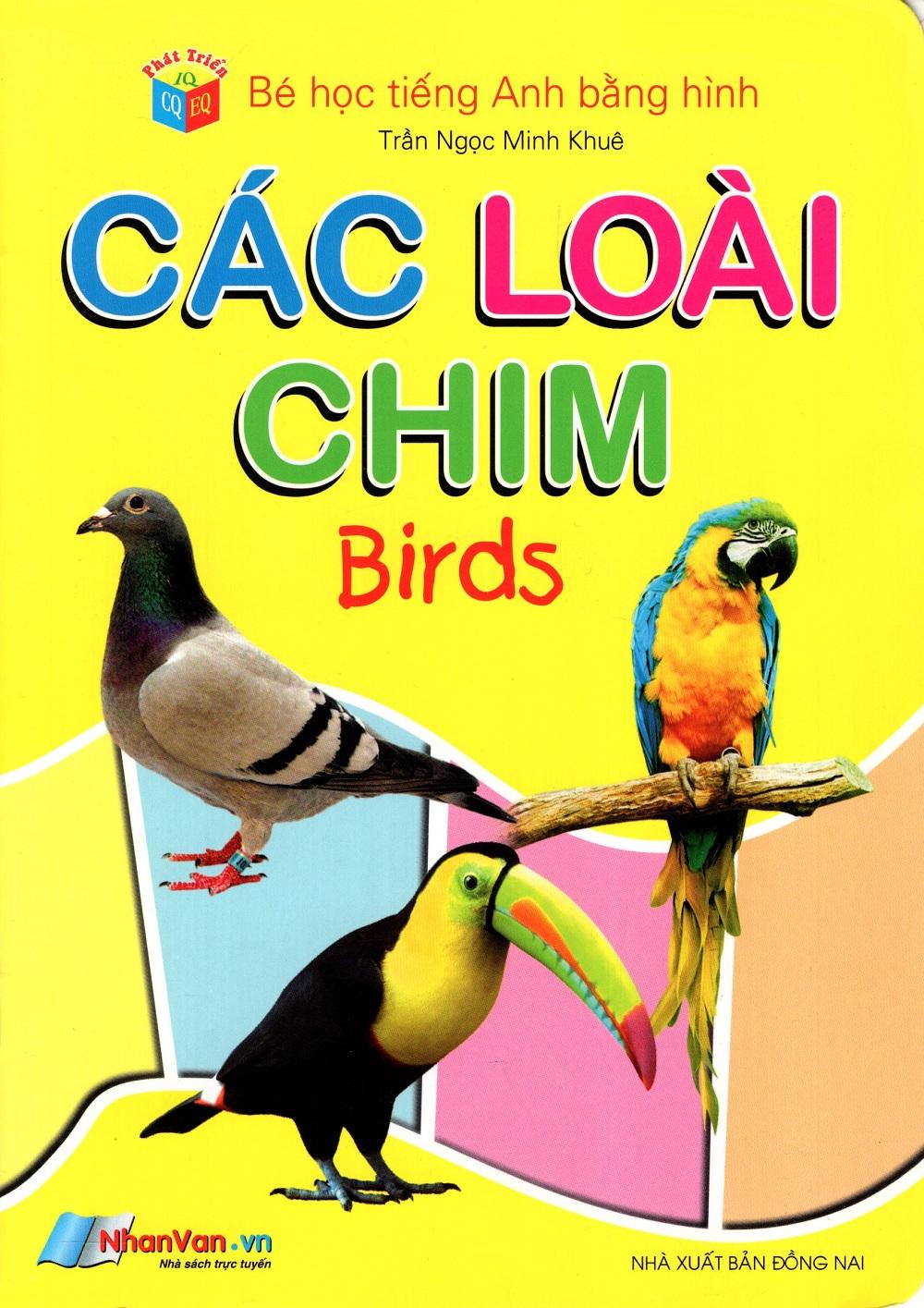 Bìa sách Bé Học Tiếng Anh Bằng Hình: Các Loài Chim