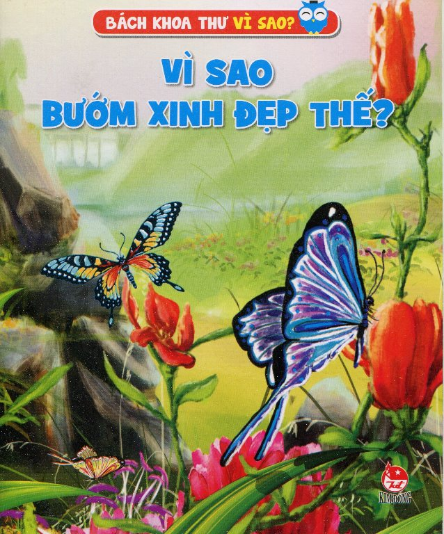 Bìa sách Vì Sao Bướm Xinh Đẹp Thế