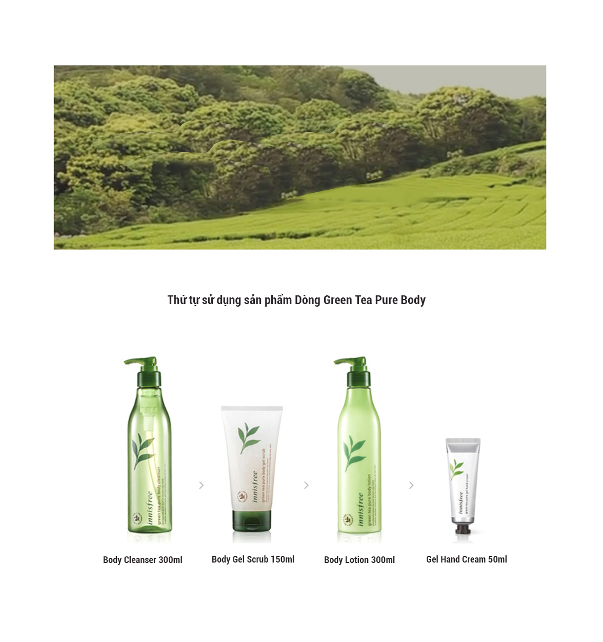 Gel Tắm Tẩy Tế Bào Chết Từ Trà Xanh Innisfree Green Tea Pure Body Gel Scrub (150ml)