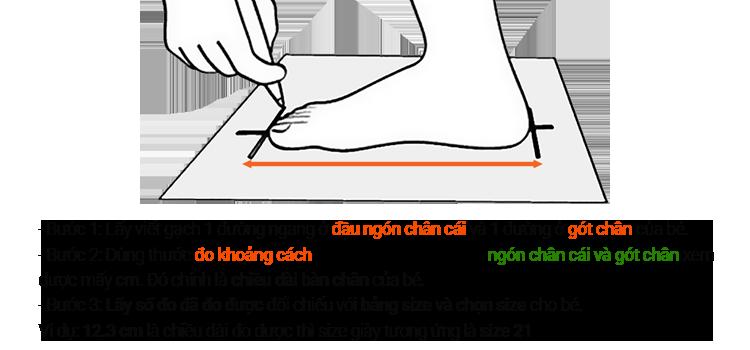 Hướng dẫn chọn size giày 1