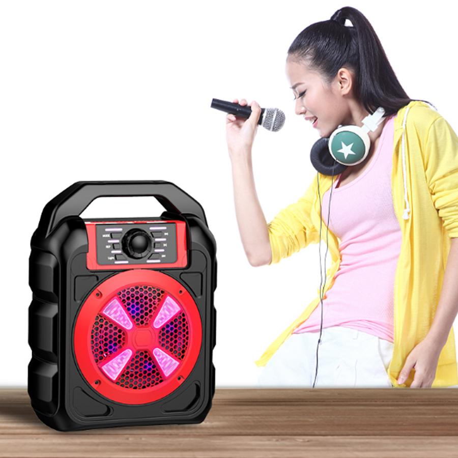 Loa Bluetooth Cao Cấp Hát Karaoke Trên Smartphone, Iphone, Ipad Xách Tay Đa  Năng B502 - Loa Bluetooth Thương hiệu OEM