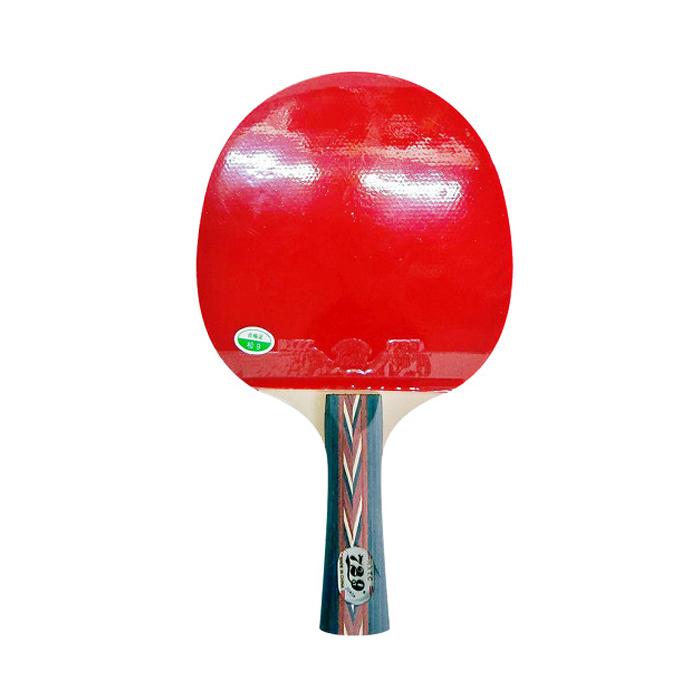 Vợt đánh bóng bàn 729-2040