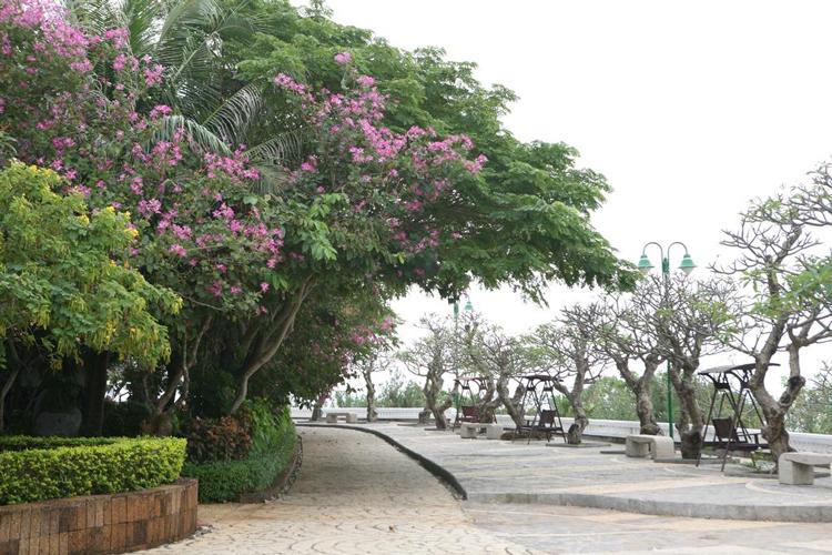 [SIÊU HOT] Long Hải Beach Resort 4* - Khuyến Mãi Tháng 5, 6, 7, 8