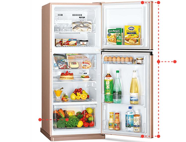 Tủ Lạnh Inverter Mitsubishi Electric MR-FV24EM (206L)