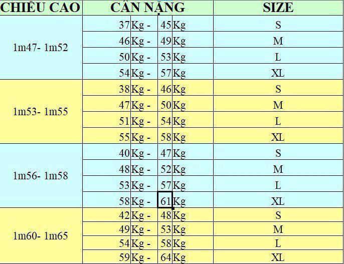 A o khoa c len sang trọng - AK801 1