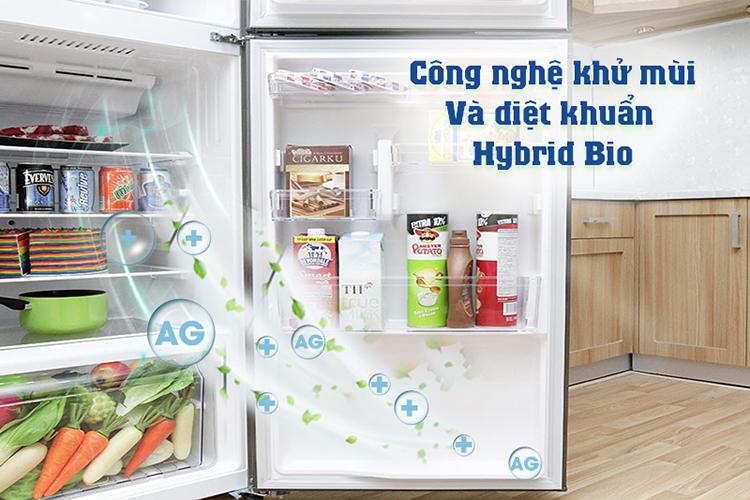 Tủ Lạnh Inverter Toshiba GR-A36VUBZ-DS (305L)