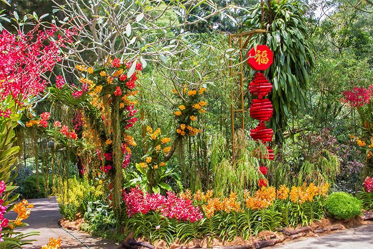 Vé Tham Quan Vườn Lan National Orchid Garden Ở Singapore